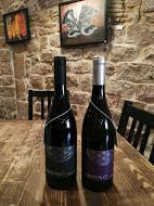 Lote vinos de Zona d'Ombra